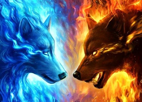 Cei-doi-lupi